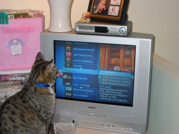 Merlin'sTV