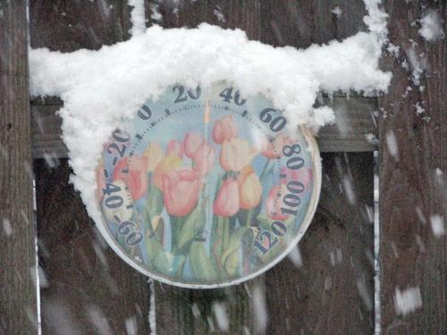 jansnow_thermometer.jpg